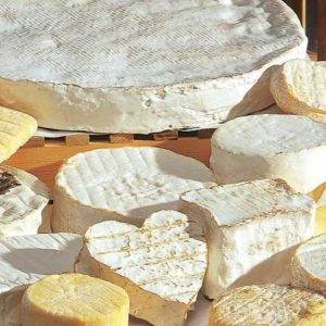 Witschimmel kaas